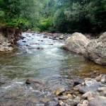 Речная и озерная горная рыбалка в Грузии