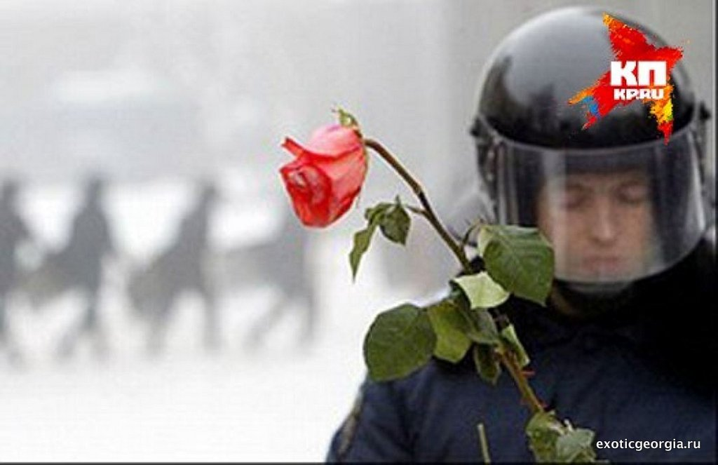 Революция роз в Грузии