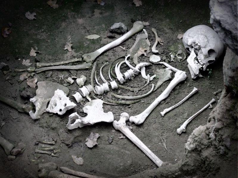 Археологический музей Дманиси на раскопках