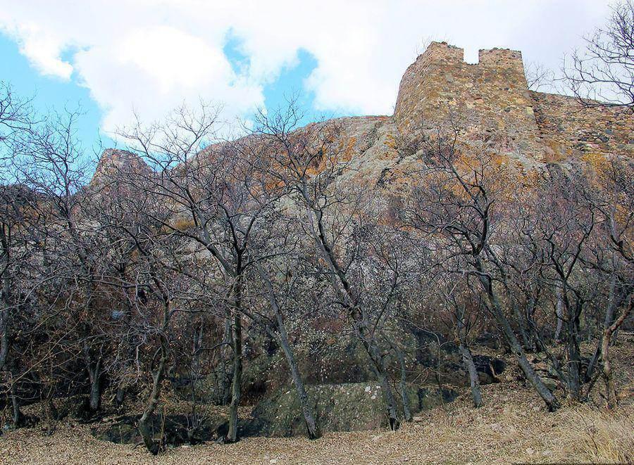 Замок Квези. По дороге в Дманиси