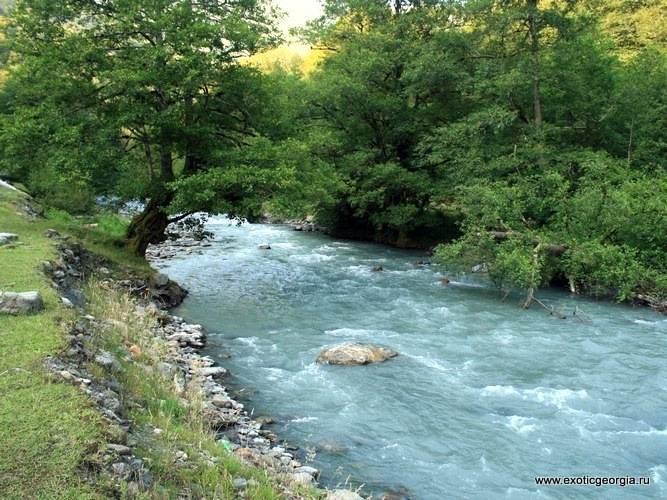 Река Стори в нижнем течении.