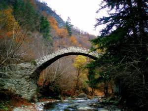 Рконский мост