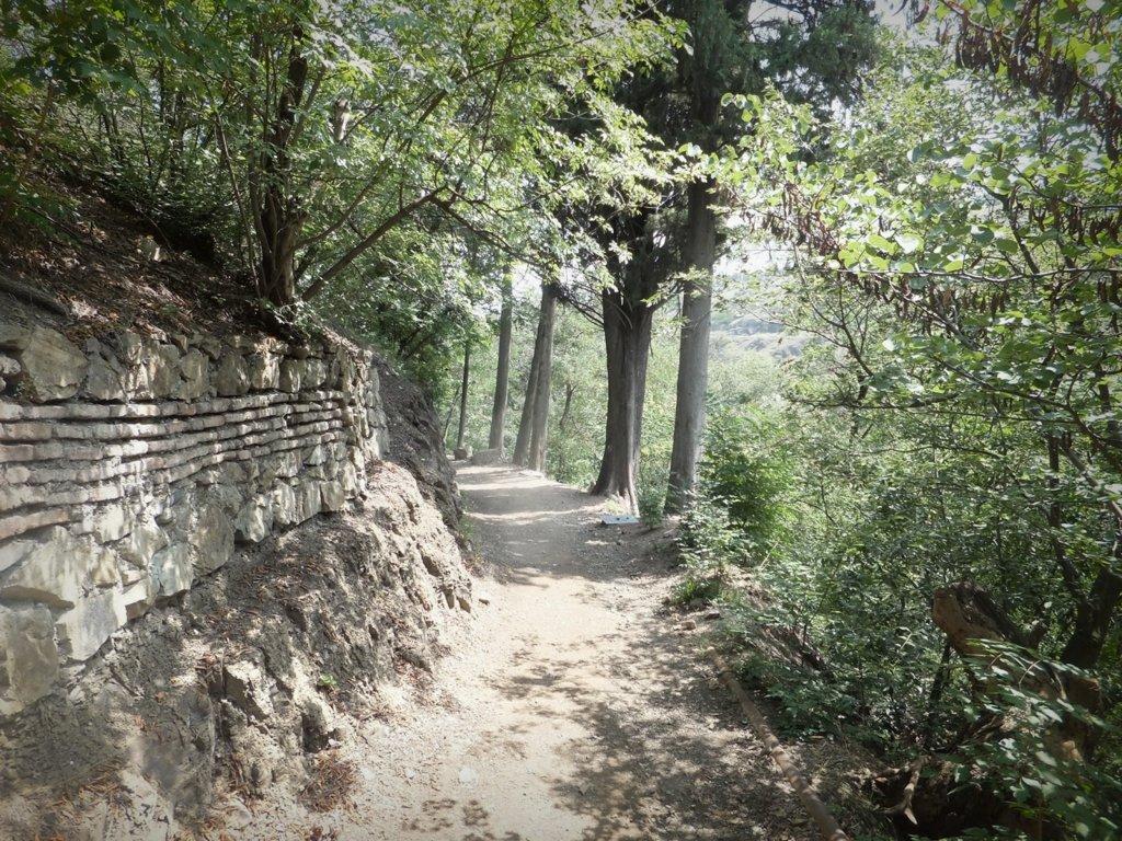 Тбилиси - Ботанический сад