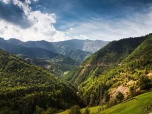 Тур по национальным паркам Грузии
