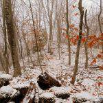 Фото зимней Грузии