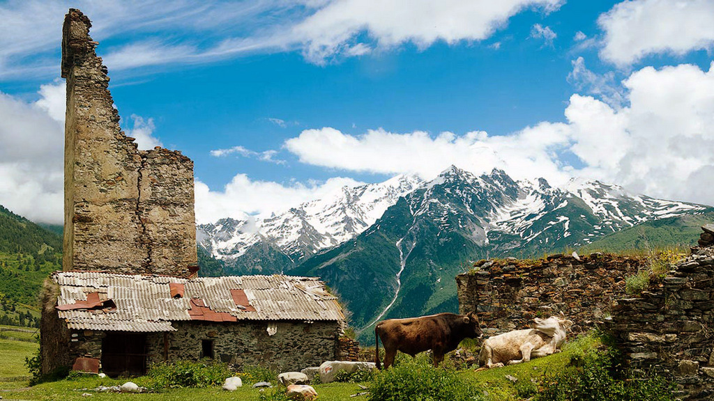 На альпийских лугах Грузии