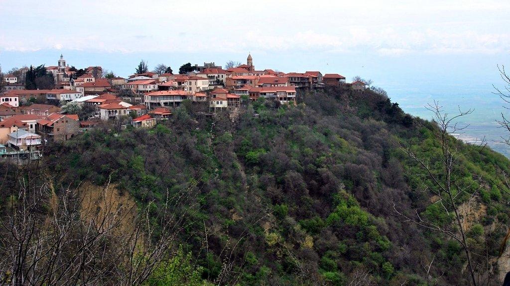 Сигнаги, Тур по национальным паркам Грузии