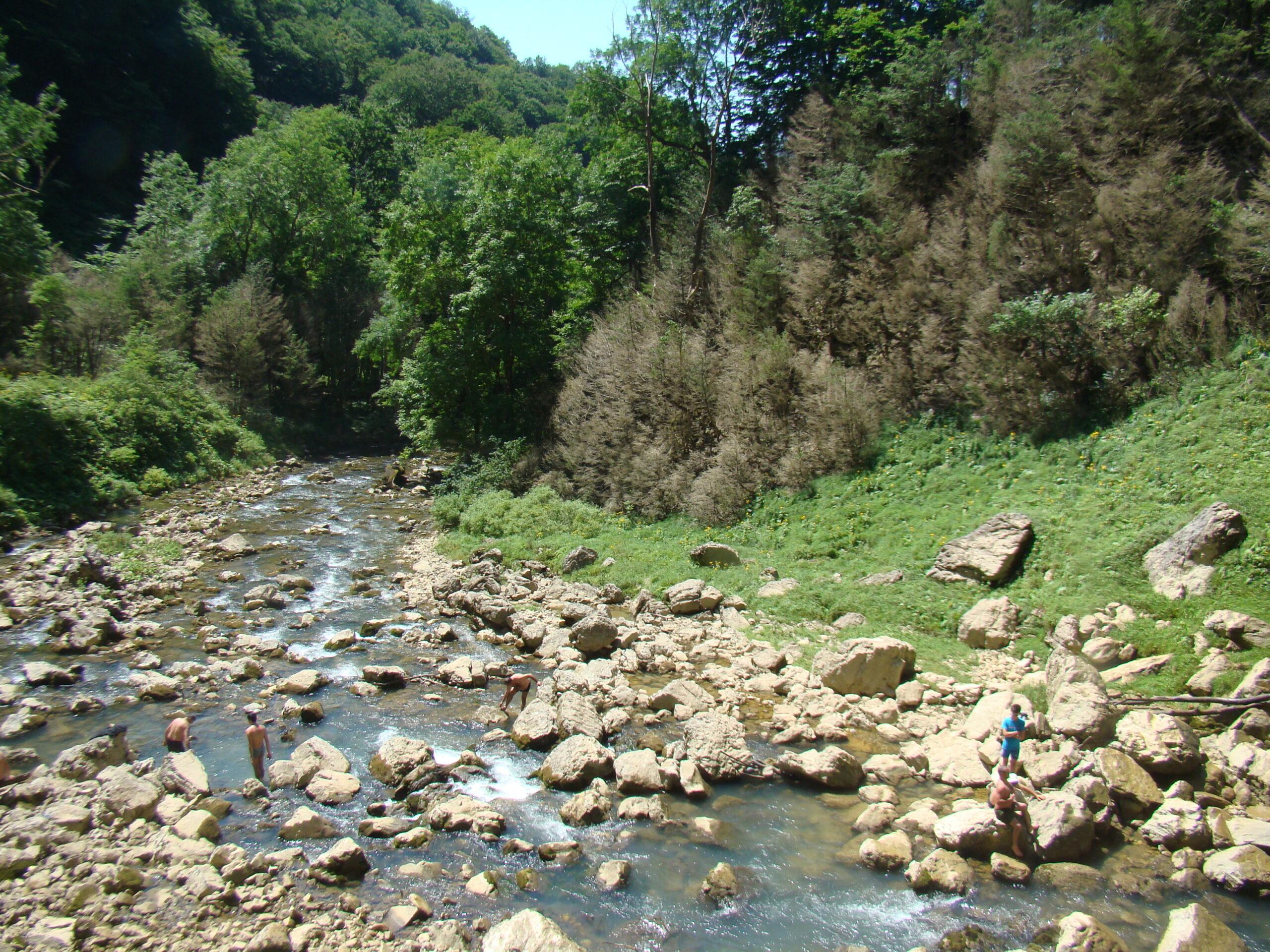 Форелевая Рыбалка в Грузии